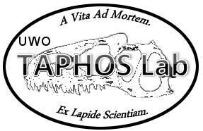 taphos3